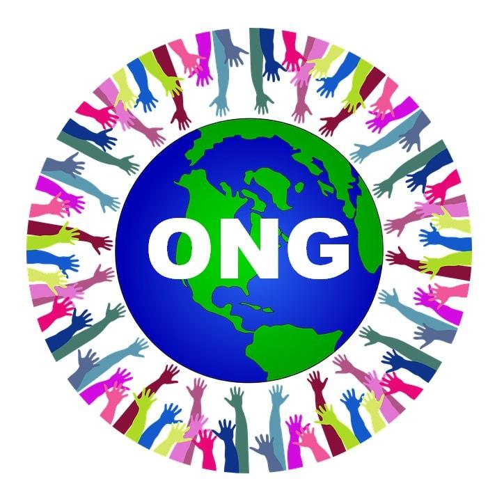 ¿Qué es una ONG y que funciones realiza?